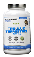 preentrenamiento BODYBUILDING NATION Tribulus