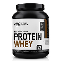 Whey proteína OPTIMUM NUTRITION PROTEIN WHEY
